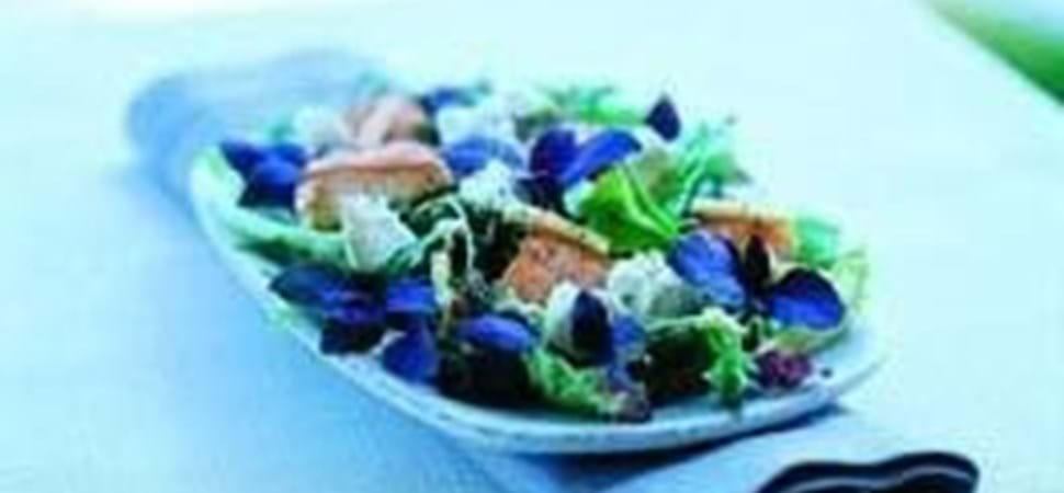 Stegt laks på salat med mild gedeost - Få opskriften her